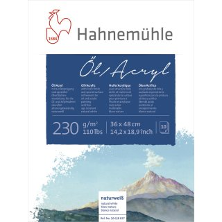 Hahnemühle Öl- und Acrylmalkarton 230 g/m² Größe: 36 x 48 cm / Blockinhalt: 10 Blatt