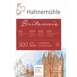 Hahnemühle Akademie Aquarellkarton Britannia Aquarellblock, satinierte Oberfläche, 300 g/m² Größe: 17 x 24 cm / Blockinhalt: 12 Blatt