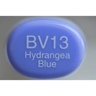 BV 13