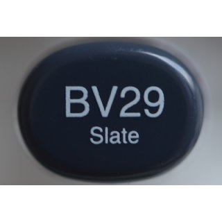 BV 29