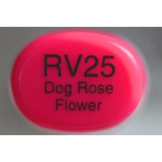 RV 25