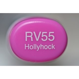 RV 55