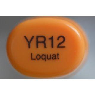 YR 12
