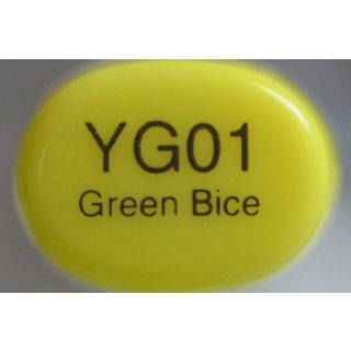 YG 01