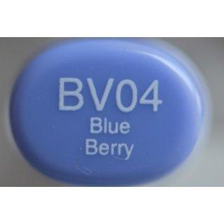BV 04