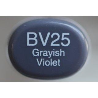 BV 25