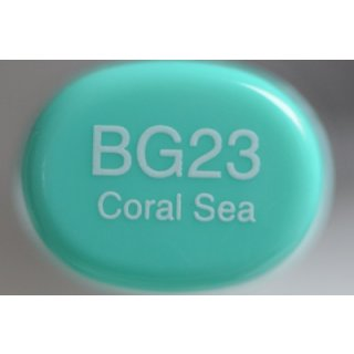 BG 23